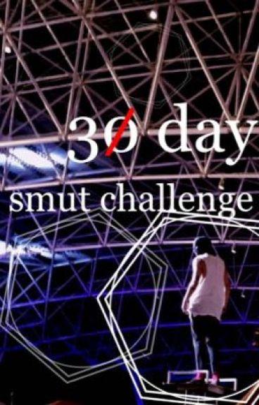 30 day smut challenge + trashed smut ✿ joshler