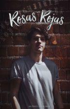 Rosas rojas →jv  by AlonDePollo
