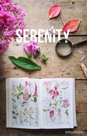 Serenity (h.s) by kittystyIes