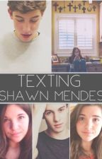Texting Shawn Mendes by iRapunzel-5