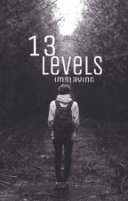 13 Levels by imslaying