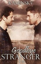 Goodbye Stranger ✰ Destiel by kaminskv