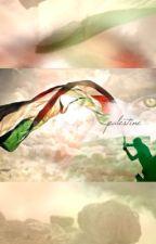 palestine, un témoignage by xvmowgli