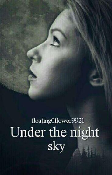 Under the night sky (pausiert + wird überarbeitet)