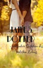 James Potter - und andere Gefahren meines täglichen Lebens by Schokolade4life