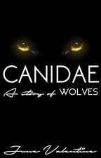 Canidae by JuneValentine