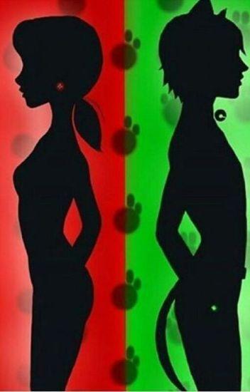 Mucize:Uğur Böceği ve Kara Kedi