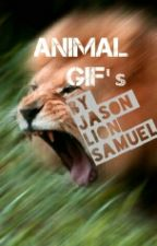 Animal GIFs by -TheShadowLion-