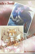 Sonic X Tails Penumbras de Amor by KeldaRamirez