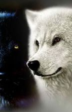The White Wolf Within (BEING EDITED, THINGS WILL  BE ADDED IN  STAY TUNED) by LeashMarie