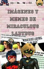Imagenes Y Memes De Miraculous Ladybug  by girlgamerXC