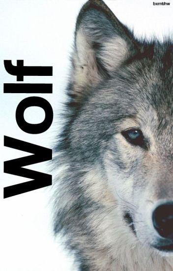 Wolf «YoonKook»