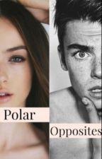 Polar Opposites  by awkwardmeee