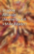 Shadow Assassin (Akame Ga Kill x Male Reader) by XDEATH_21