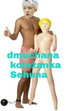 Dmuchana Koleżanka Sehuna  by kozaznosa