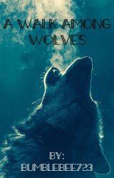 A walk among wolves (Cat Noir/ Adrien x reader one-shot) by Bumblebee723