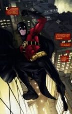 Tim Drake X Reader Prefencess  by BloodyPainter_1