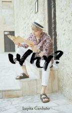 Why? ➣ Yoonmin by LxGxbangtan
