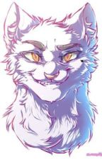 KITCLAN RP by Jayfeather4evers