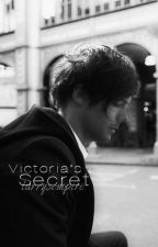 Victoria's Secret 》l. s.《 {book 2} *slow* by larrysempire