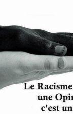 Le racisme [EN  RÉÉCRITURE] by 123catgirl123