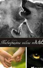 Niebezpieczna wilcza miłość by ciachaa