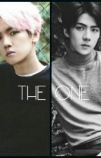 The One {Sebaek/Baekhun} by bae_kkie