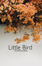 Little Bird [stiles stilinski au] by -voidskywalker