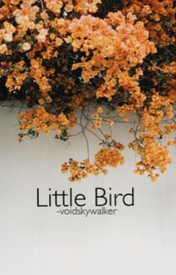 [✓] LITTLE BIRD ( STILES STILINSKI )