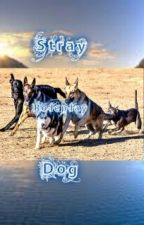 Stray Dog Rp by -FreeSpirit6-