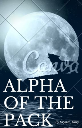 Alpha Of The Pack (PDH Boys x Reader) by Applebeauty