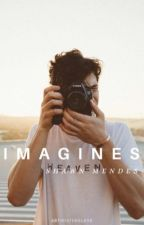 Shawn Mendes Imagines by artificiyeolove