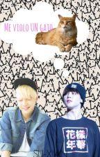 Me violo un gato by SuWoongKM