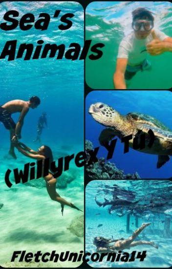 «Sea's Animals»
