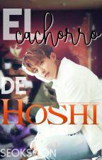 #4.- El cachorro de Hoshi - Seoksoon by IsMoreno