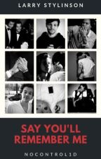 Say You'll Remember Me || L.S. MPreg!Louis by nocontrol1d