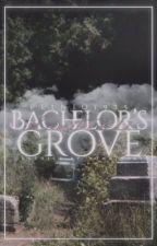 Il cimitero di Bachelor's Grove ( Larry Stylinson ) by plinio1975