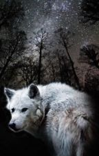 Silver Wolf by IsisFSacuru