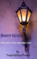 Hidden Secrets; Harry Potter and the Philosphers Stone by WeirdoWithAPurpose