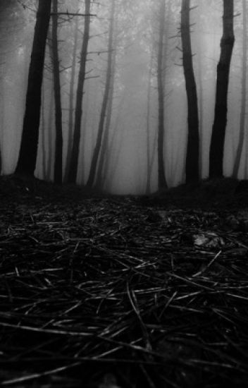 Lost In The Dark Woods Dementia