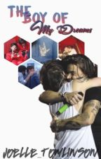 The boy of my dreams // L.S {slow updates} by joelle_tomlinson