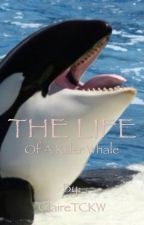 The Life Of A Killer Whale by ClaireTCKW