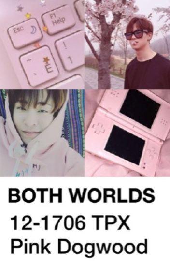 both worlds | 2jae
