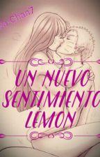 (NaruHina) Un Nuevo Sentimiento Lemon by Nia-Chan7