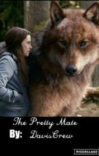 The Pretty Mate by daviscrew
