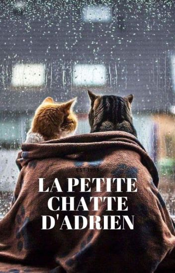 La gatita De Adrien. ( Adrien/ChatNoir y Tn )