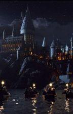 Tổng hợp Harry Potter 1 (ĐN) by biubiunah