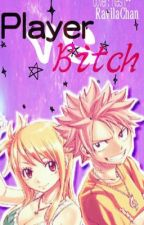 Player VS. Bitch ~ Dragneel VS. Heartfilia  by _Titania_