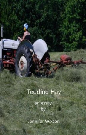 Tedding Hay (Abbreviated Version) by ChickenJen