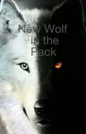 New Wolf in the Pack by jumpingkitty